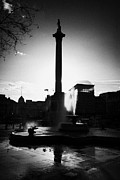 Trafalgar Square Posters - silhouette of nelsons column and fountain inTrafalgar Square London England UK United kingdom Poster by Joe Fox