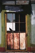 Rusty Door Prints - Silhouette of Safety Print by Peter Piatt