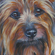 Silky Framed Prints - Silky Terrier Framed Print by Lee Ann Shepard