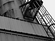 Metal Sheet Framed Prints - Silo and ladder Framed Print by Robert Ulmer