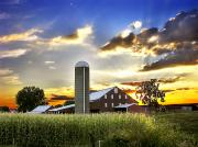 Pennsylvania Barns Photos - Silo, Barn, And Cornfield Of An by Amy White & Al Petteway
