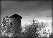 Relaxed Photo Originals - Silo by Rhonda DePalma