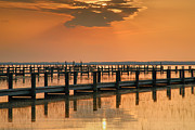 Chincoteague Island Prints - Silver And Gold Print by Steven Ainsworth