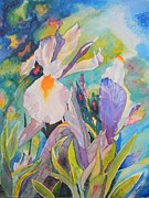 Warren Thompson Art Prints - Silver Beauty Iris  Print by Warren Thompson
