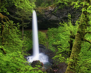 Rock Formation Prints - Silver Falls Print by Nick Grier Photography