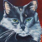 Gray Cat Paintings - Silver Grey Cat Portrait by Robyn Saunders