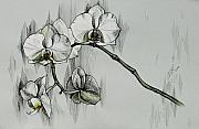 Realistic Mixed Media Originals - Silver Morning Orchids by Inga Vereshchagina