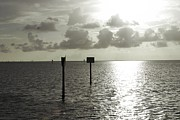 Judy Hall-Folde - Silver Sunset on the Gulf of Mexico