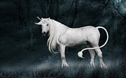 Unicorn Posters - Silver Unicorn Standing in Miisty Forest Poster by Ethiriel  Photography