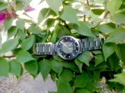 Muhammad arif Channa -MAC- - Silver Watch On  Leaf