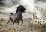 Legend Digital Art - Silverado by Shanina Conway