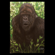 Jungle Paintings - Silverback greeting by John Shook