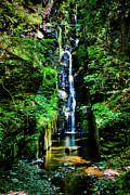 Delaware River Prints - Silverthread Falls I Print by David Hahn
