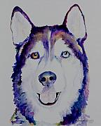 Husky Dog Paintings - Simba by Pat Saunders-White