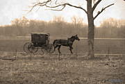 Horse And Buggy Prints - Simple Life Print by David Arment