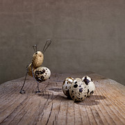 Quail Photos - Simple Things Easter 03 by Nailia Schwarz
