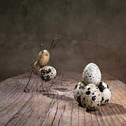 Quail Photos - Simple Things Easter 07 by Nailia Schwarz