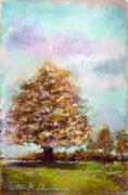 Nj Pastels - Simple Tree by Peter R Davidson