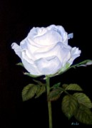 Anke Wheeler Paintings - Simplicity Rose by Anke Wheeler