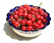 Red Fruit Framed Prints - Simply a Bowl of Cherries Framed Print by Carol Groenen