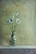 Glass Wall Prints - Simply Daisies Print by Priska Wettstein