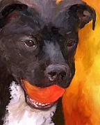 Toy Dog Paintings - Simply Orange by Jai Johnson