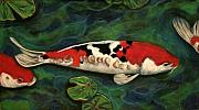 Koi In Water Prints - Single File Print by Tracey Hunnewell