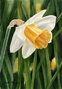 Daffodils Painting Metal Prints - Single Yellow Daffodil Metal Print by Sharon Freeman