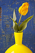 Yellow Leaves Prints - Single yellow tulip in yellow vase Print by Garry Gay