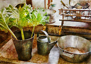 Farm Scenes Photos - Sink - Eat your greens by Mike Savad