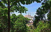 Park Scene Photos - Sintra National Palace by Carlos Caetano