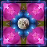 Lotus Blossoms Posters - Sister Moon Poster by Bell And Todd