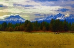 Diane Digital Art - Sisters Cascade Range by Diane E Berry