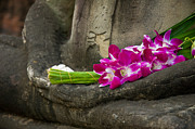 Tempel Prints - Sitting Buddha in meditation position with fresh Orchid flowers Print by Ulrich Schade
