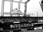 Left Field Prints - Sitting In The Stands Print by Kevin D Davis