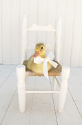 Ducklings Photos - Sitting Pretty by Amy Tyler