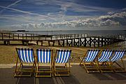 Beach Prints - Six empty deckchairs Print by Sheila Smart
