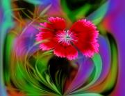 Multi Color Digital Art - Six Red Petal Flower by Linda Phelps