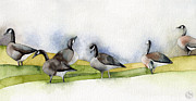 Canadian Geese Paintings - Six Siblings in Suburbia by Kristin Maija Peterson