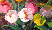 Netherlands Paintings - Sixlips by Susan F Greaves