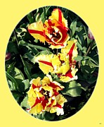 Lively Art - Skagit Valley Tulips 4 by Will Borden