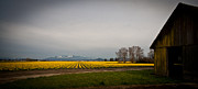 Awakening Prints - Skagit Vista Print by Mike Reid