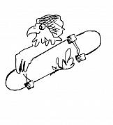 Cap Drawings Posters - Skateboard Hawk  Poster by Paul Miller