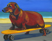 Dachshund Prints - Skaterdog Print by Debbie Brown