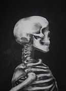 Human Skull Drawings - Skeleton Study by James Falciano