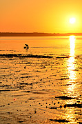 Martina Fagan - Skerries Sunset Silhouette