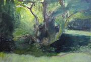 Afternoon Drawings Framed Prints - Sketch of a shady glade. Framed Print by Harry Robertson