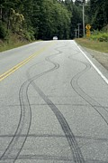 Braking Posters - Skid Marks On A Road Poster by Alan Sirulnikoff