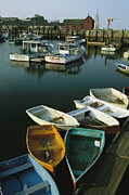 Skiffs Framed Prints - Skiffs Tied Up At A Dock In The Inner Framed Print by Tim Laman