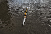 Rowers Photos - Skimming the Waters by Douglas Barnard